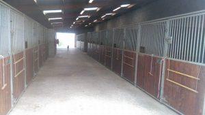 Une écurie pour les chevaux de propriétaires au calme